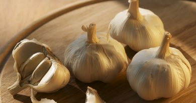 The secrets of Garlic